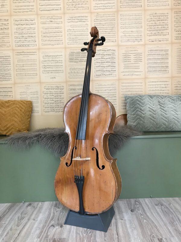Oude Tjechische cello