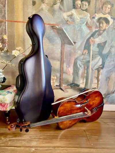 lichtgewicht-cellokoffer-leonardo-